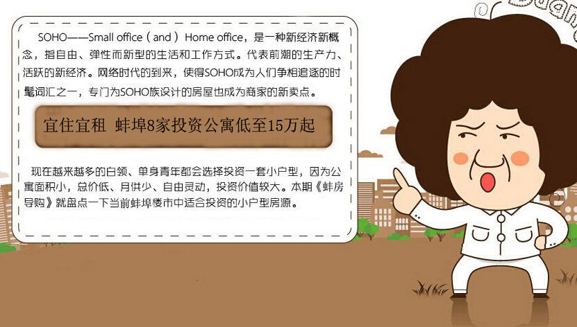青春SOHO小户型 蚌埠8家投资公寓15万起