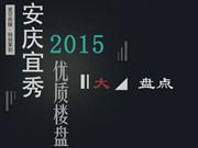 安房网*策划:安庆宜秀2015优质楼盘大盘点