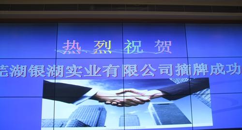 3.043亿!芜湖银湖实业摘得经开区1510号地块