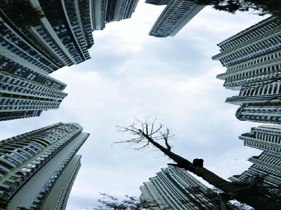11月第4周:楼市正式入冬 成交量下滑24.5%