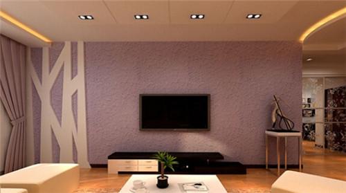 精致的硅藻泥电视墙装修效果图大全2015图片