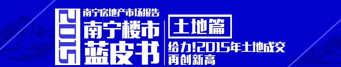 2015年楼市蓝皮书土地篇:成交再创新高