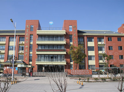 肥西县桃花镇中心学校