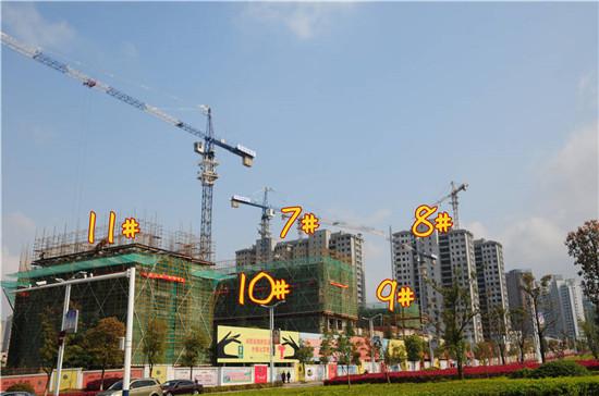 乐业丹桂园4月工程进度:11#、12#稳步提升