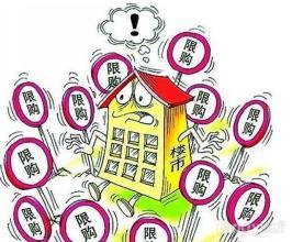合肥房价疯涨房管部门:不排除重启楼市限购政策