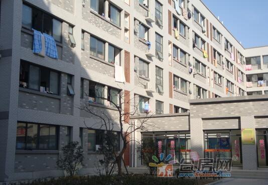 合肥市新城学校(小学部)