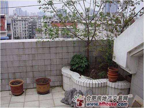 地铁口精装无税多层好房!金鸟花园--豪华装修性价比最好的房子