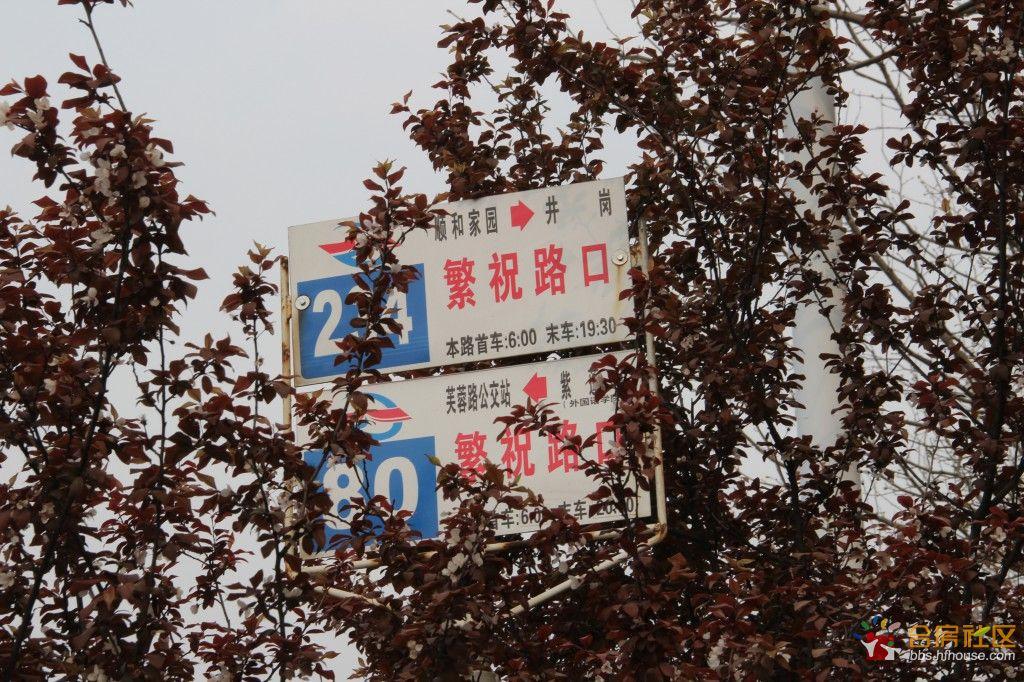 格式工厂IMG_0355.jpg
