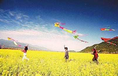 【新华·九龙首府】2017魅力风筝节 邂逅春天