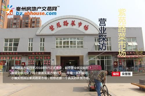 城建|亳州紫苑路菜市场营业探访高清图集