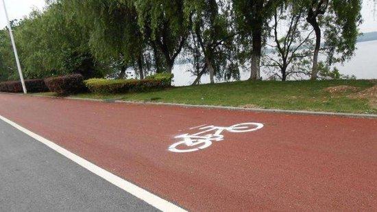 合肥老城区27条支路年前将建成慢行车道