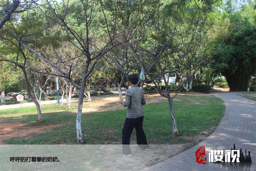 周末菱湖 安庆人的悠闲时光