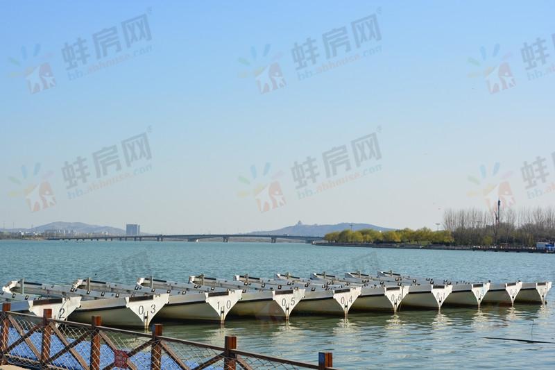 蚌埠污染天气预警 拒绝雾霾从置业龙子湖开始