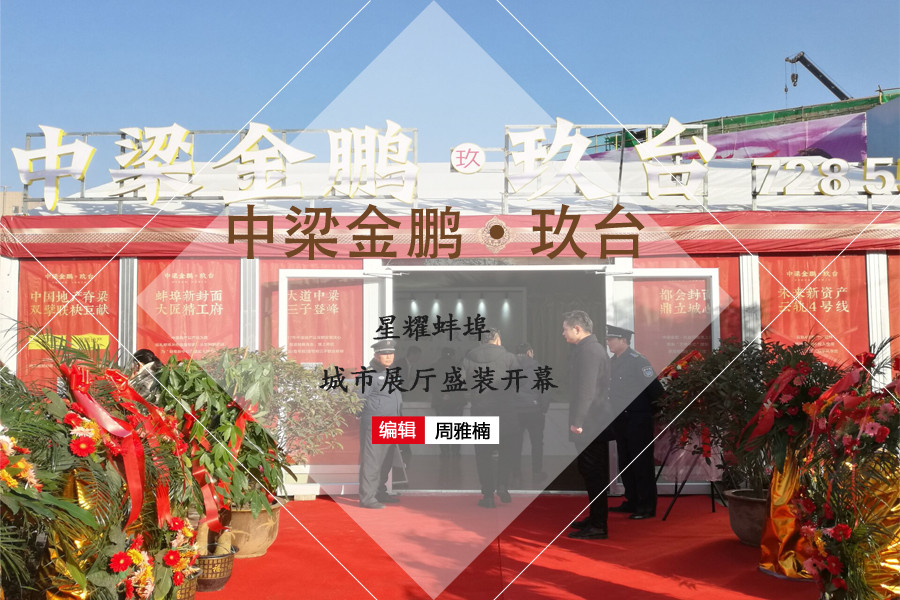 中梁金鹏•玖台:星耀蚌埠 城市展厅盛装开幕