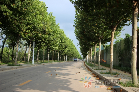 沱河景观带.jpg