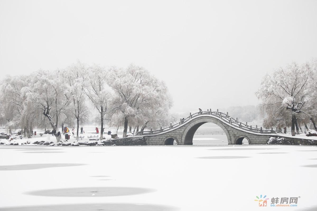 2018年的第一场雪!蚌埠高颜值雪景楼盘看过来