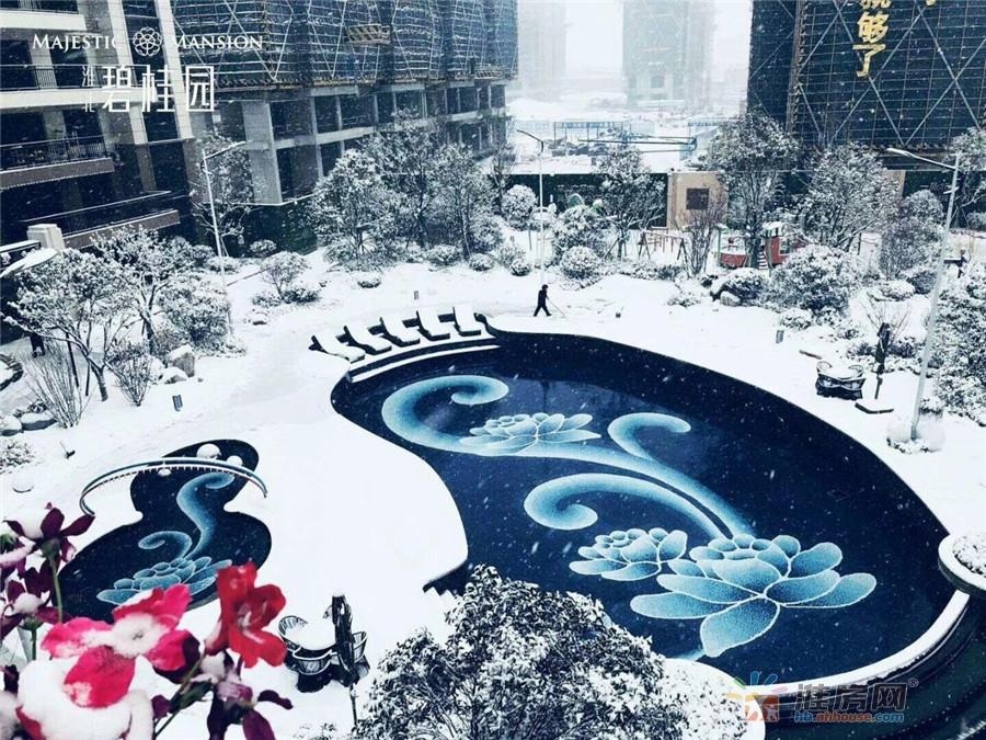 雪后的淮北碧桂园 繁华与静谧共存 让你真正把家安在公园里