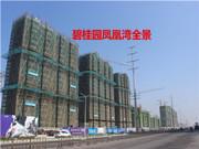 碧桂园凤凰湾 3月工程进度 项目主体建设中