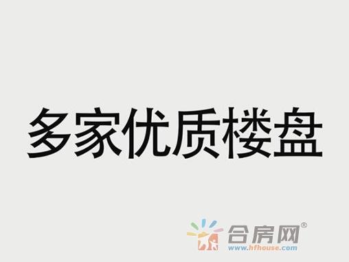 芜湖站春天行动看房团4.15与您不见不散!