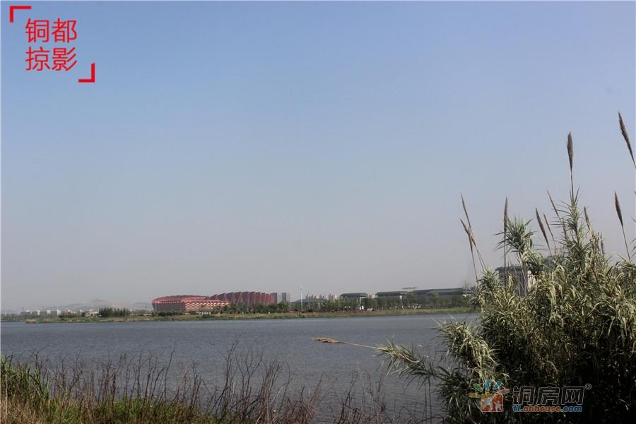 环湖三公里---图说西湖湿地公园的旧貌与今颜