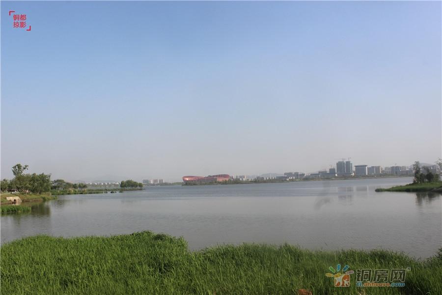 环湖三公里---淮矿东方蓝海赏湖水繁花 飞鸟晚霞