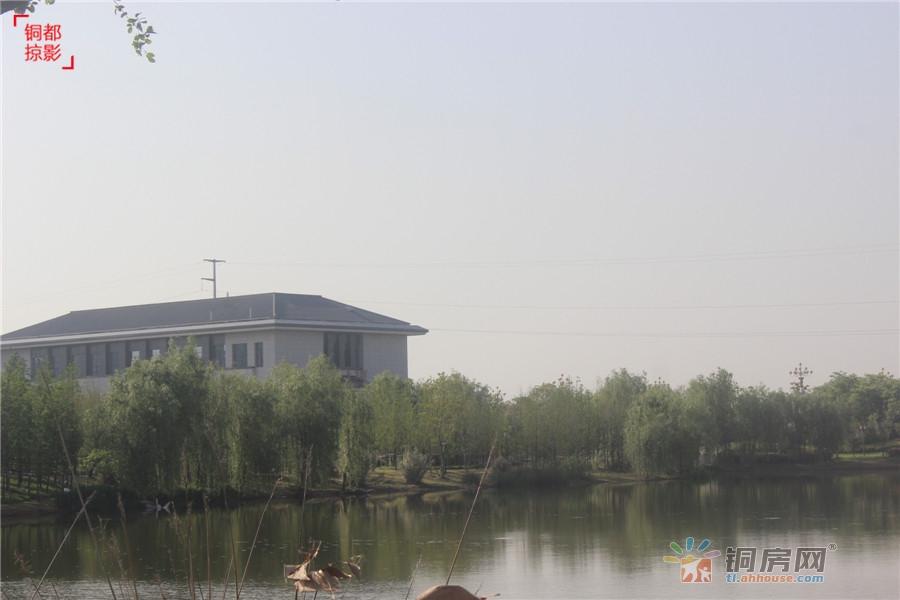 环湖三公里---中梁熙华府匠心华宅 拥抱湿地鲜氧