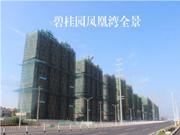 碧桂园凤凰湾 6月工程进度 项目主体建设中