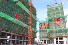 华盛中央公馆6月工程进度:最高楼建至13层