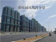 碧桂园凤凰湾 7月工程进度 项目主体建设中