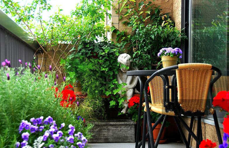 弘阳•时光里 当院子遇上日子时光便成了诗