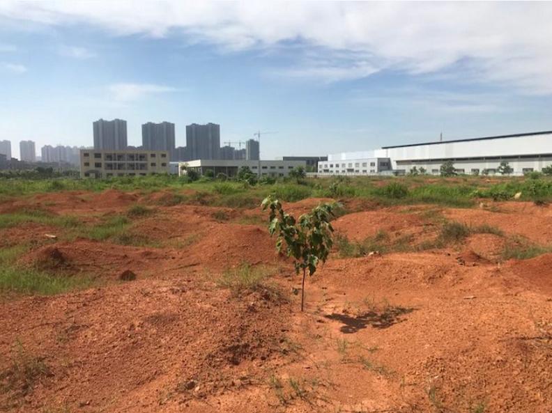 江西捷盈房地产1.12亿竞得新建区地块