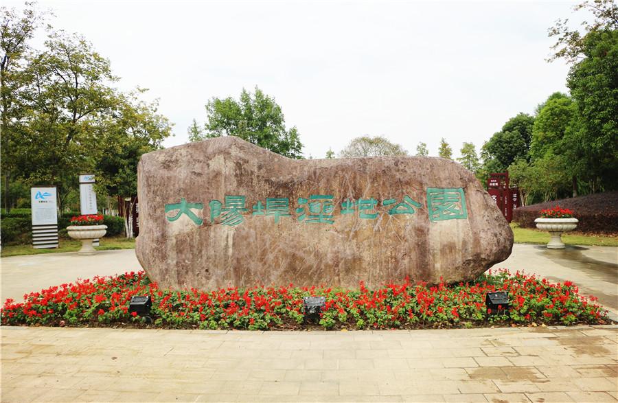 """芜湖版""""西溪公园""""——大阳垾湿地公园美景如画"""