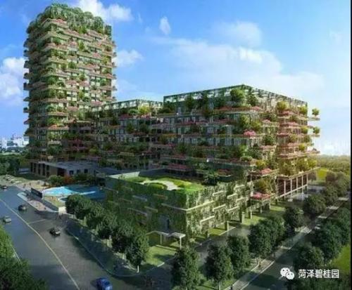 碧桂园称现在是进驻香港的合适时间 会努力增加土储