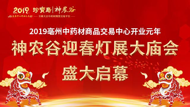 2019亳州神农谷迎春灯展大庙会盛大启幕