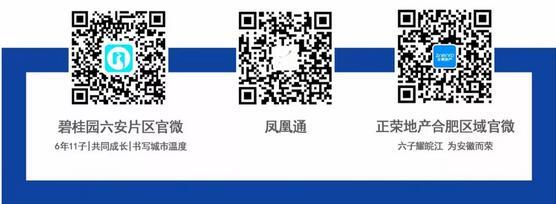 QQ截图20190216105929.jpg