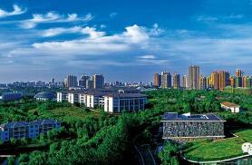 开通8个申领渠道 六安市522万人可申领电子社保卡