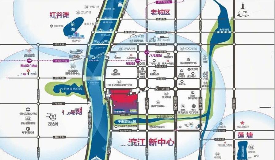 滨江上品交通图