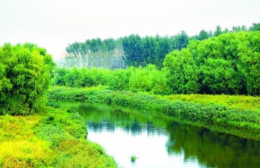 江西下达重点防护林资金2.75亿元