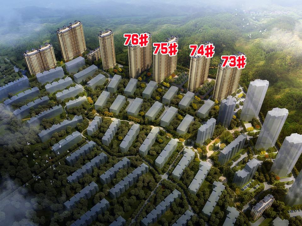 淮北凤凰城在售楼栋