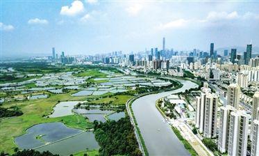 深圳住房改革配套文件出台:未来60% 都是保障住房
