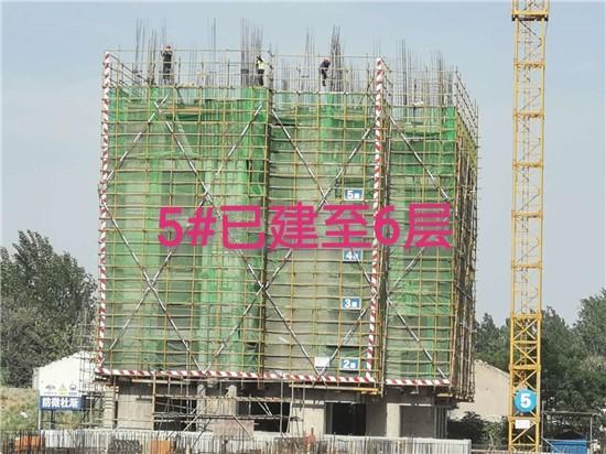 国金华府:5月工程进度播报  5#已建至6层
