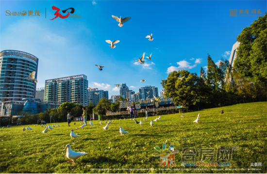 20190603软文二:国家战略+区域规划(最新)(4)1383.png