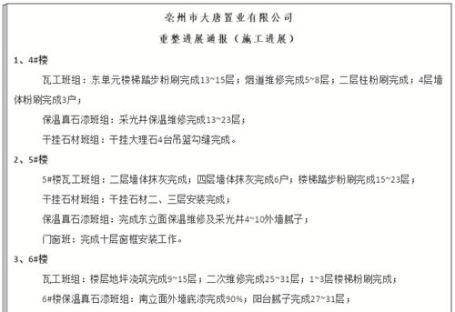 亳州大唐置业5.31到6.6重整进展通报
