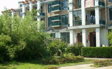 桐城:改造老旧小区加大投入 提升居民宜居指数