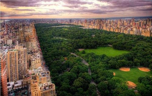 别羡慕纽约,亳州也有自己的中央森林公园