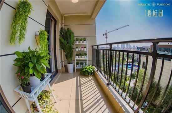 淮北碧桂园6.9米面宽南向阳台 兑现一座城市人民的阳台梦