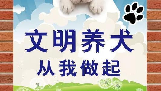 《蚌埠市养犬管理条例(草案)》进行一审