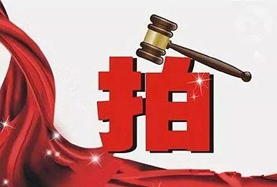 芜湖中院发布城东某楼盘房产及土地使用权拍卖公告