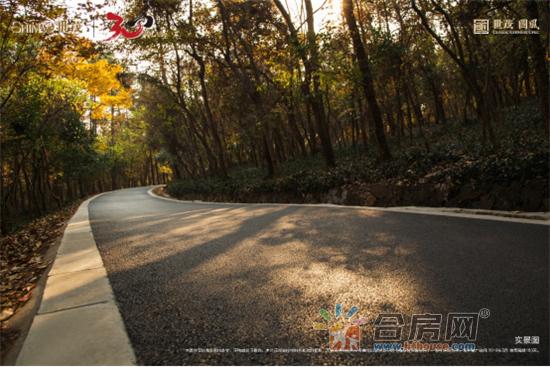 【项目推文】合肥世茂国风186.png