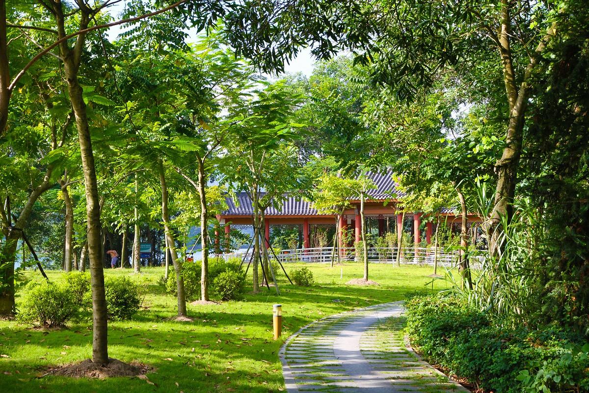 合肥将新添一批城市公园 市民增添休闲健身好去处